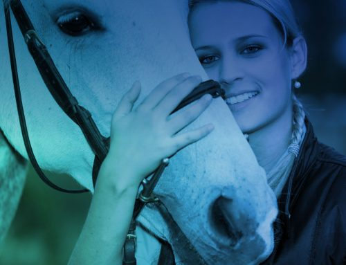 Alexander Technique Course for Horse-riders in Knutsford on 23 June 2018